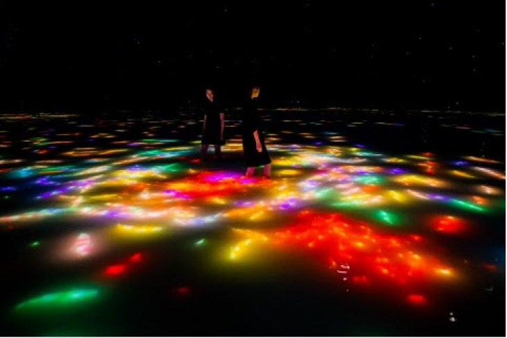 teamLab Planets, a museum where you move through water in Toyosu, Tokyo, is currently a space for autumn. the carp swimming on the water's surface change into autumn leaves when they collide with visi