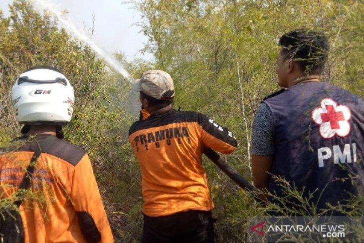 17 hektare hutan di Kawasan  Lintas Timur Bangka terbakar