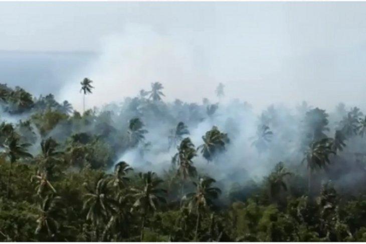 Terkait karhutla di Jambi, polisi tetapkan 19 tersangka
