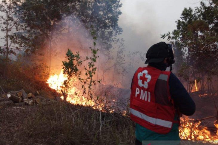 Karhutla makin meluas, PMI Banjar dikerahkan bantu pemadaman