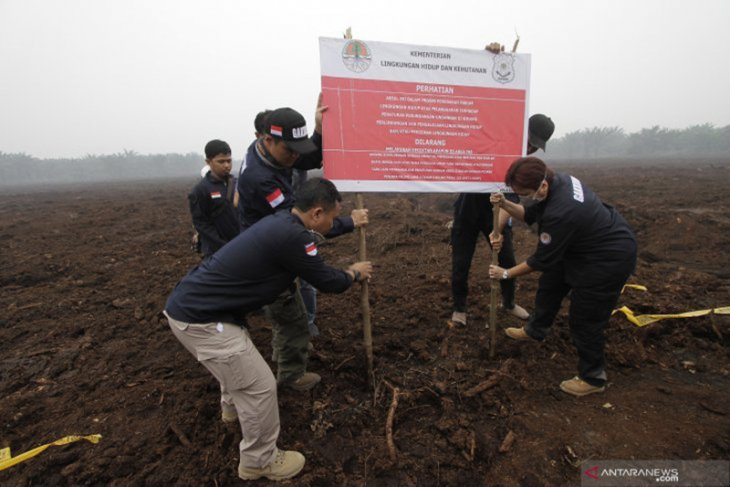 Di Riau, KLHK segel lahan perusahaan sawit Malaysia yang diduga dibakar