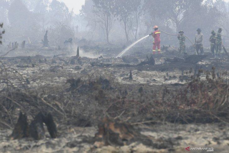 Greenpeace: KTT ASEAN momen tepat  entaskan masalah asap lintas batas