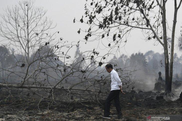 Gubernur Riau nyatakan status siaga darurat karhutla berakhir