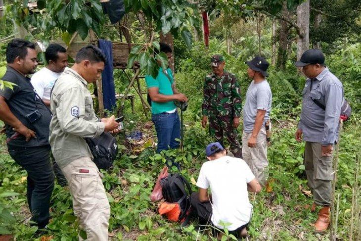 BKSDA cari penyebab gangguan harimau di Aceh Selatan