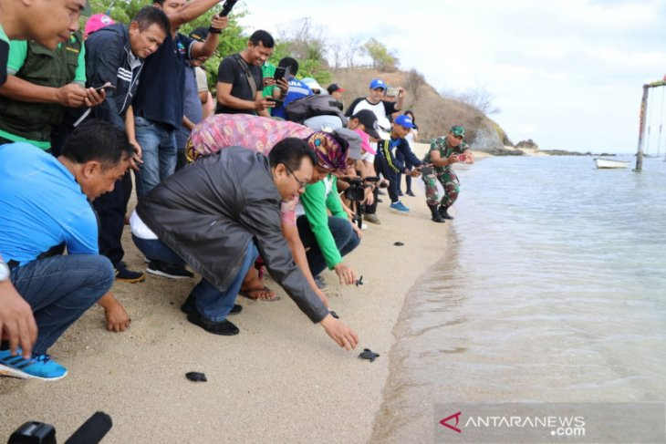 Lepas tukik peringati World Cleanup Day 2019