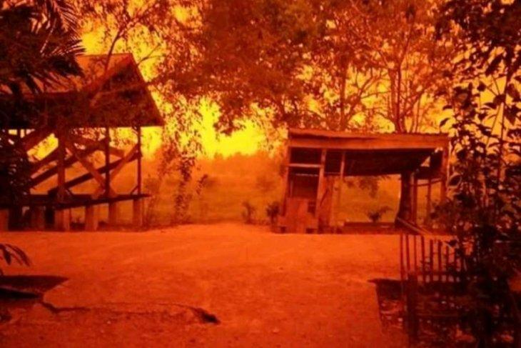 WARSI sebut kebakaran hutan dan lahan di Jambi semakin meluas