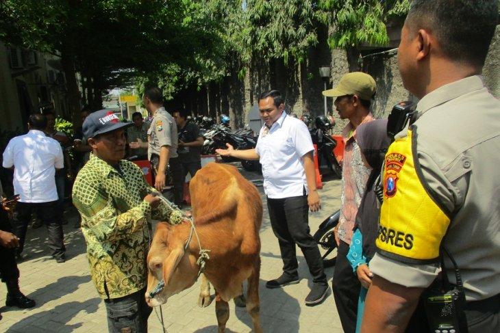 Polisi amankan pencuri sapi