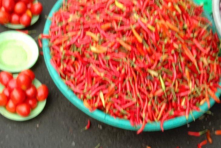 Harga cabai rawit di Ambon melonjak