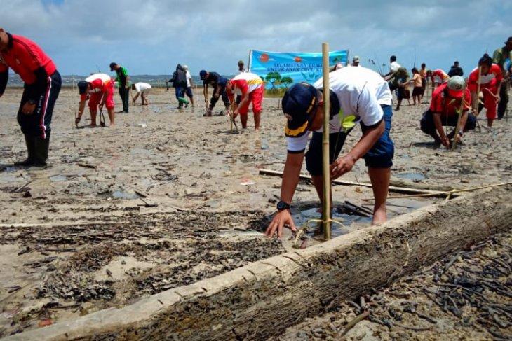 Lanal Saumlaki tanam 5.000 anakan pohon bakau