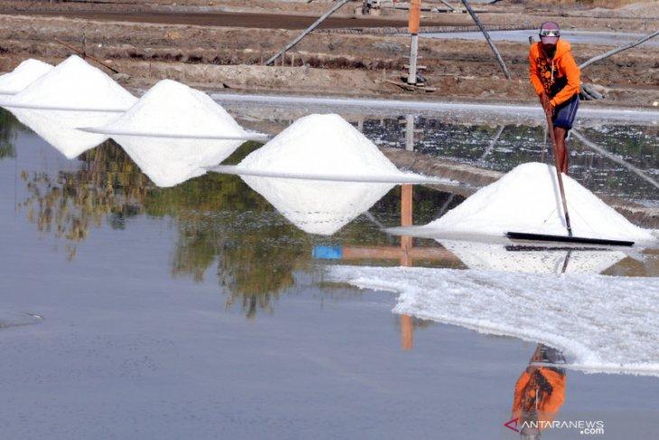 Terkait pembentukan KEK garam, Gubernur Khofifah bilang tunggu investor masuk