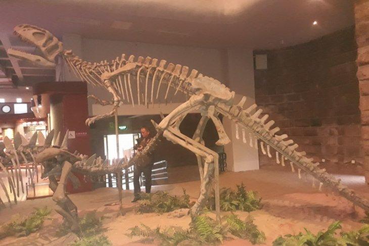 Di China, bekas jejak kaki dinosaurus 100 juta tahun ditemukan lagi
