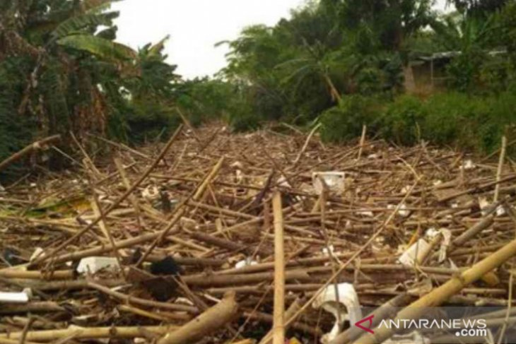 Sungai Cikeas tertutup 1.200 kubik sampah bambu