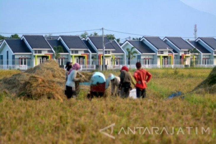 Sawah makin menyusut, produksi beras Kota Madiun ikut terdampak