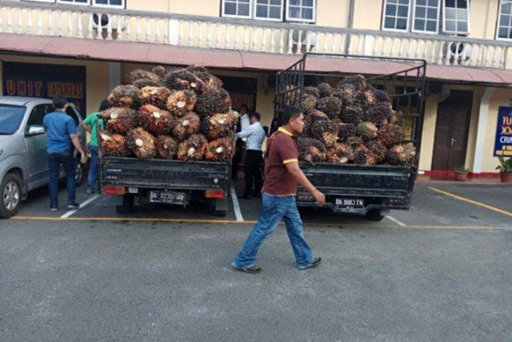 Polresta Pematangsiantar amankan terduga dalang pencurian sawit