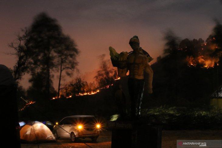 Kebakaran gunung widodaren