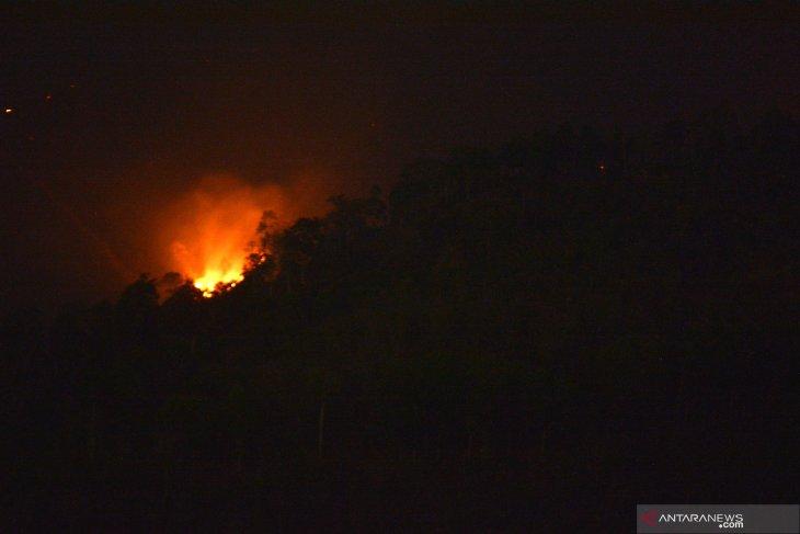Kebakaran di Gunung Argopuro