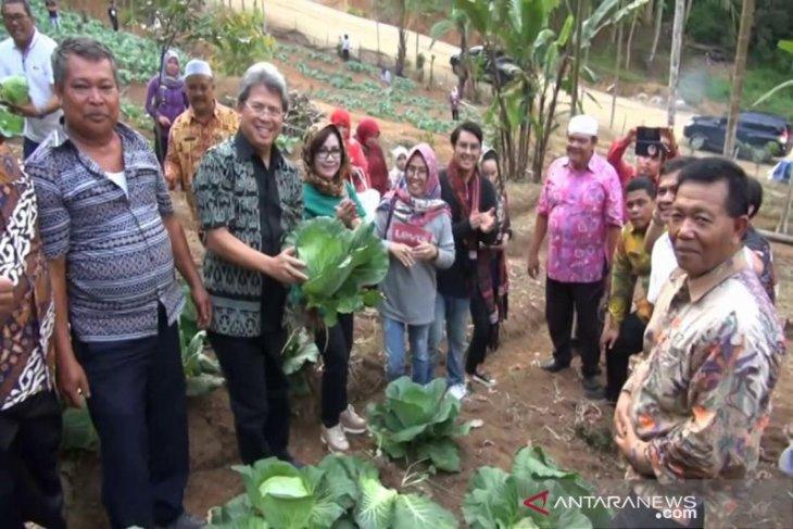 Langkah strategis Dinas Pertanian Madina membangkitkan ekonomi masyarakat