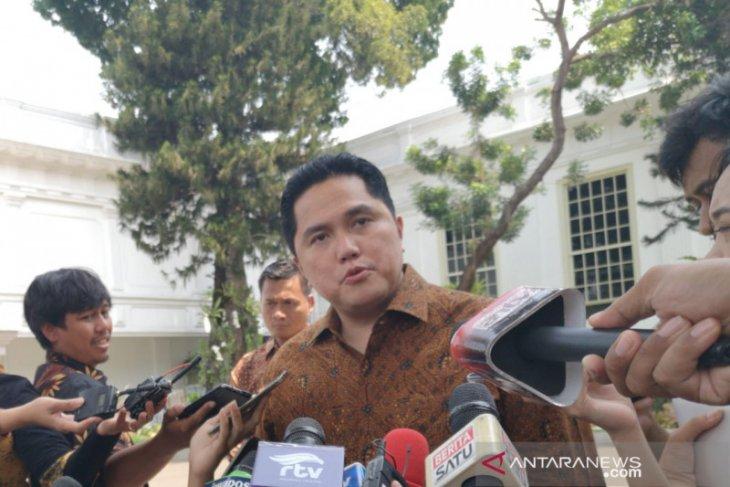 Menteri BUMN sepakati pembagian tugas wakil menteri
