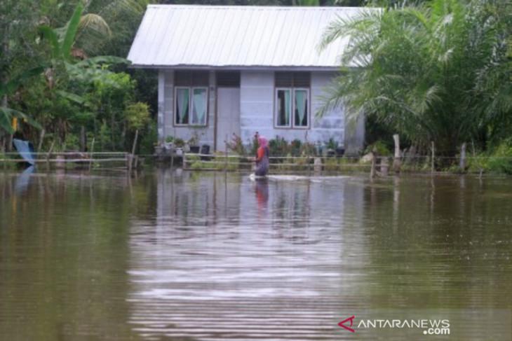 Banjir meluas, ratusan warga di Aceh Barat masih mengungsi