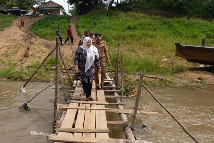 Bupati Muarojambi menyeberangi jembatan