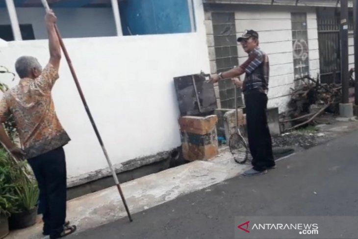 Anjing liar berkurang setelah diadopsi warga