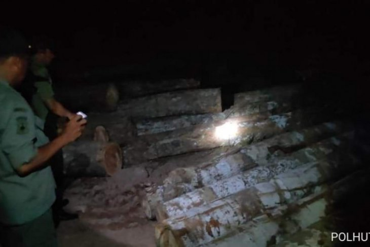 Tim patroli kehutanan temukan tumpukan Kayu Ilegal di Kahelaan