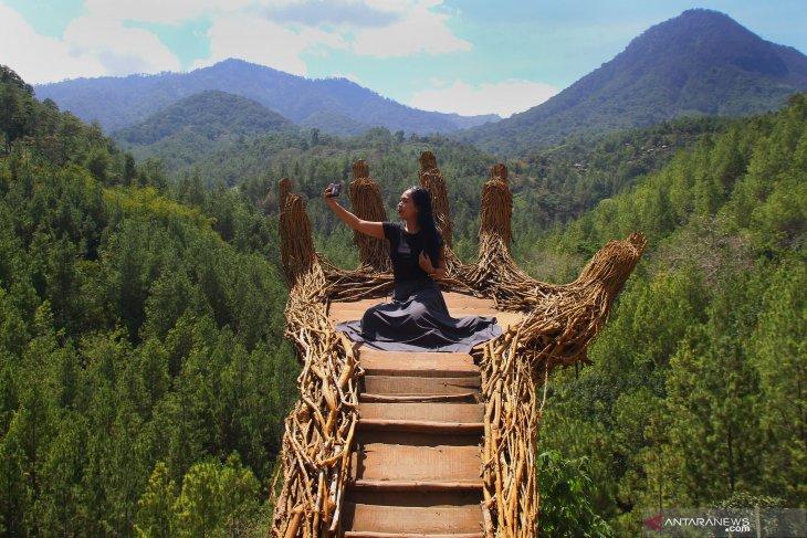 Hasil pengembangan wisata kawasan hutan