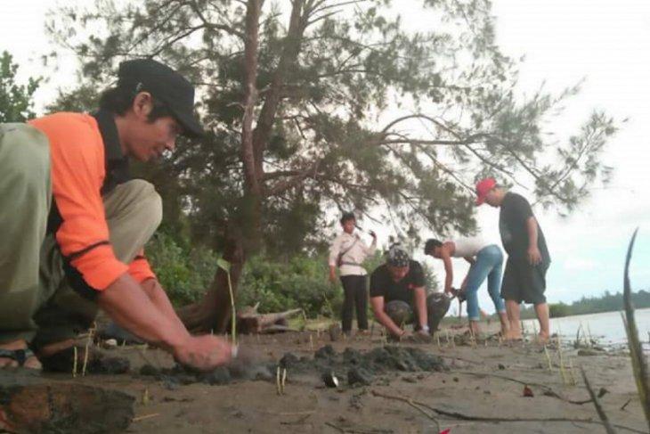 DKP Mukomuko libatkan pihak ketiga tanam mangrove