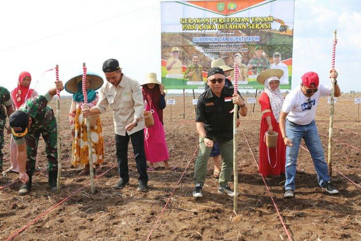 Kalsel buka lahan pertanian 250 ribu hektare melalui Serasi