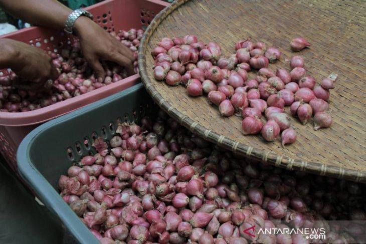 Harga bawang merah lebih murah Rp3 ribu di Pasar Tani