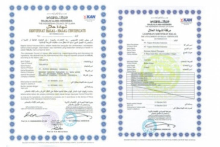 PT. NIPPON SHOKUBAI INDONESIA obtained Halal certification for all products