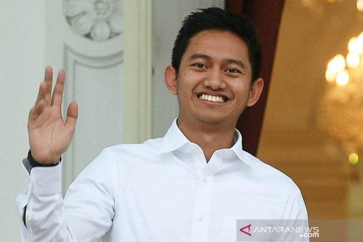 Belva, CEO Ruangguru jadi staf khusus Jokowi