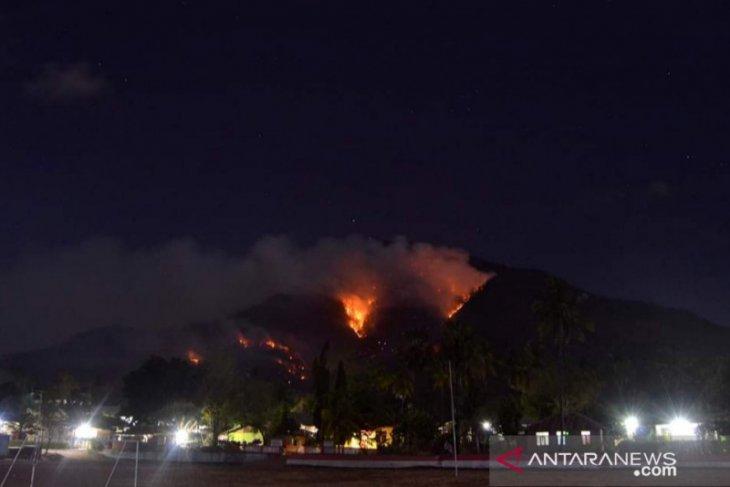 Mt Ile Mandiri in Larantuka again besieged by wildfire