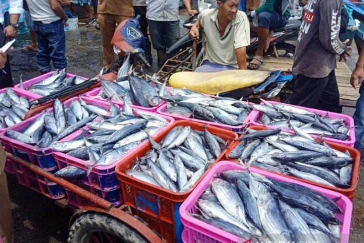 Sumatera Utara dan Sumatera Barat minati ikan segar dari Aceh Barat