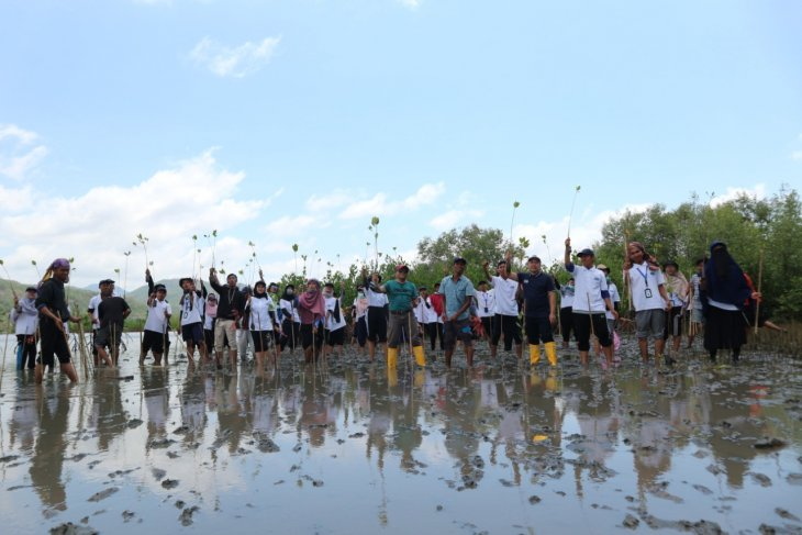 BI scholarship recipients conduct mangrove planting in West Lombok