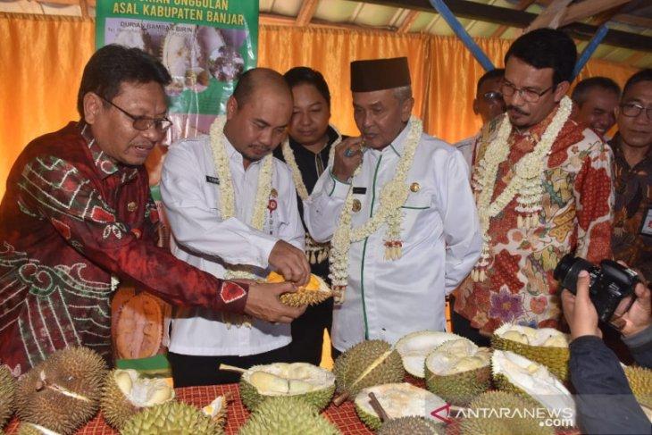 Banjar daftarkan 10 durian lokal varietas unggul nasional