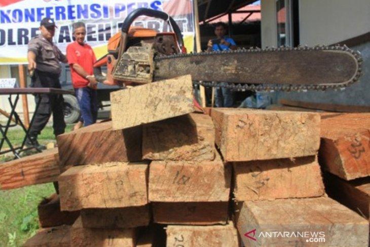 Polres Aceh Barat tangkap pria terduga pelaku pembalakan liar