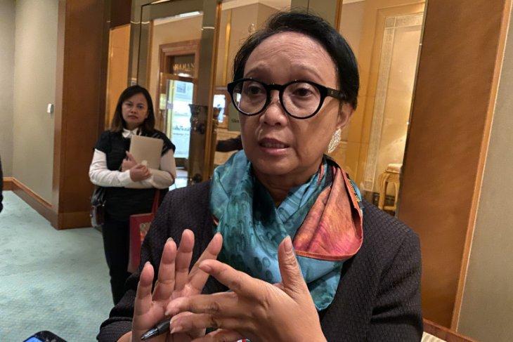 Indonesia-UEA inginkan ketegangan politik di Timur Tengah segera mereda