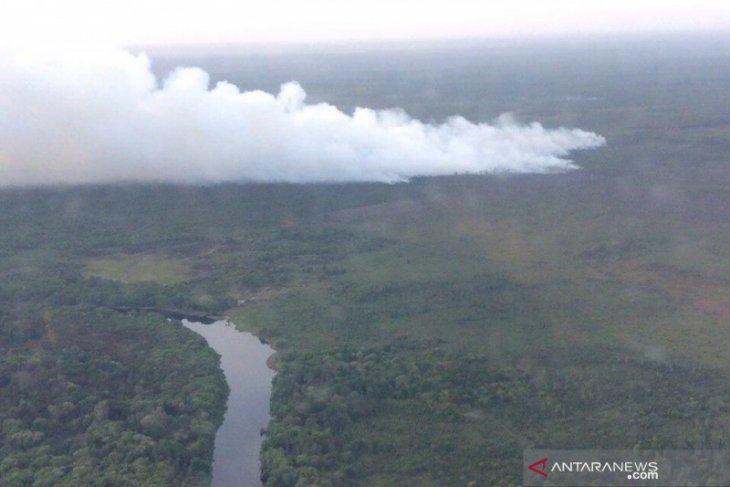 Waduh, 10 hektare hutan di SM Giam Siak Kecil Riau terbakar
