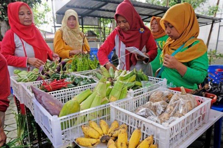 Pasar tani pekarangan