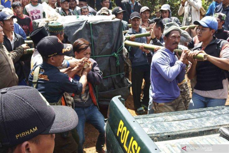 Harimau terperangkap di Muara Enim dievakuasi ke Lampung