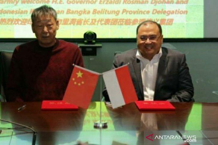 Kantongi izin ke China, Gubernur Erzaldi gandeng beberapa pihak
