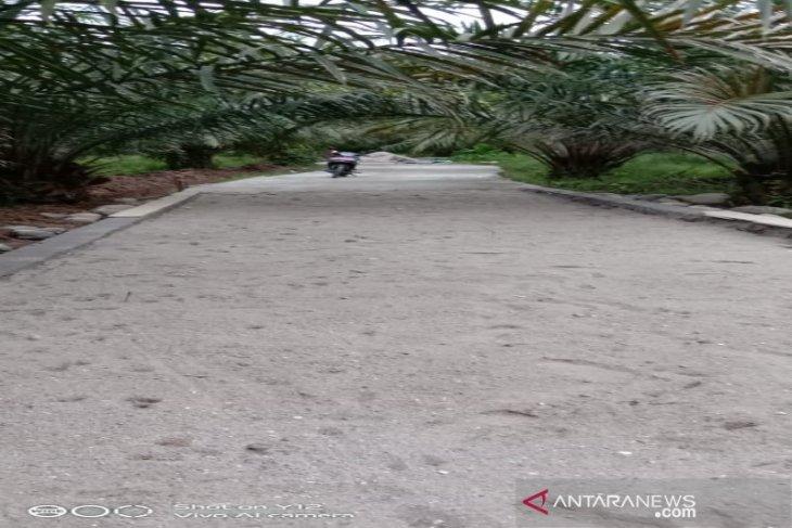 Jalan usaha tani Desa Pardamean perlancar angkutan petani