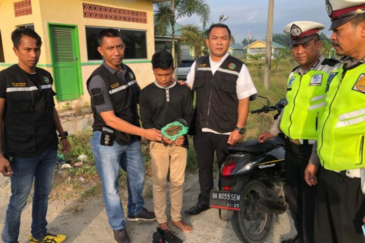DJ musik warga Stabat bawa ganja ditangkap Satresnarkoba Polres Langkat