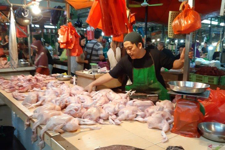 Harga sawi keriting di Pontianak naik 100 persen