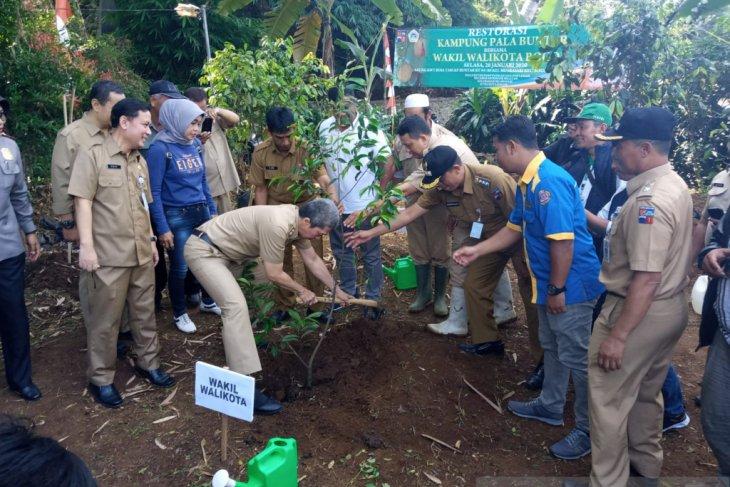 Kampung Buntar Bogor direstorasi dengan tanam bibit pohon pala