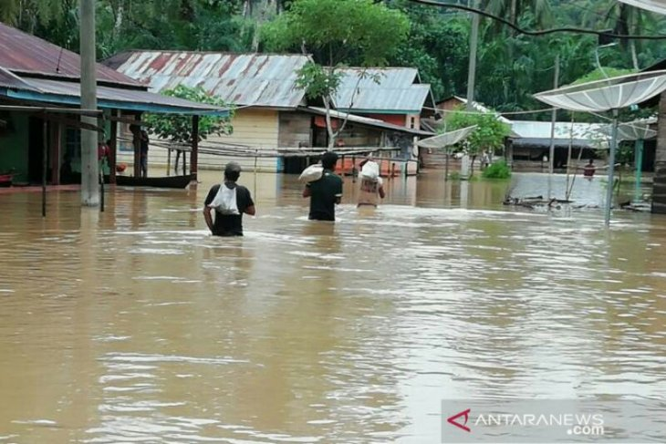 Rain-triggered floods swamp 163 homes in South Tapanuli, North Sumatra