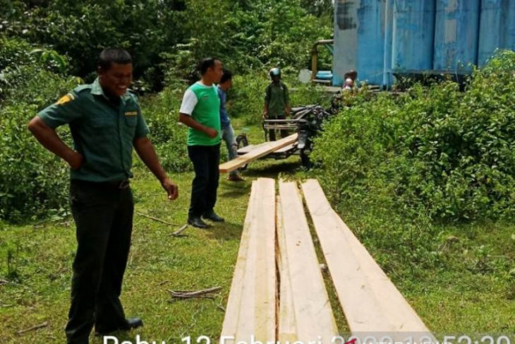 BKPH amankan kayu olahan ilegal di Nagan Raya
