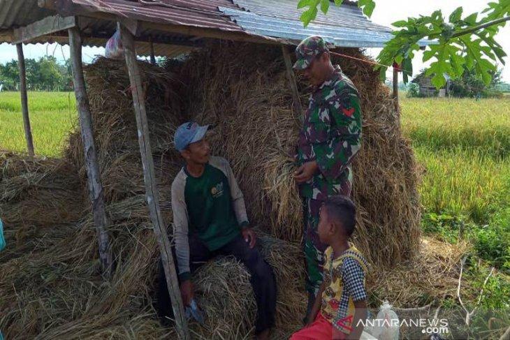 Cegah Karhutla, Babinsa Kodim Aceh Jaya temui warga hingga ke sawah