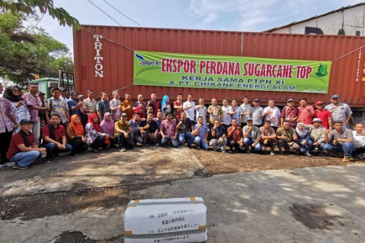 PTPN XI ekspor perdana daun tebu kering ke Jepang